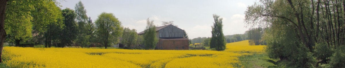 Stall-Panorama-Rapsfeld